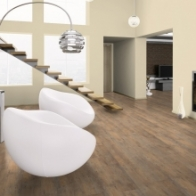 "Wineo Vinylboden Ambra Floor ""Boston Pine Cream"""
