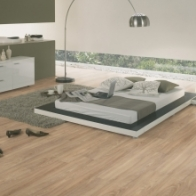 "Wineo Vinylboden Ambra Floor ""Grey Canadian Oak"""